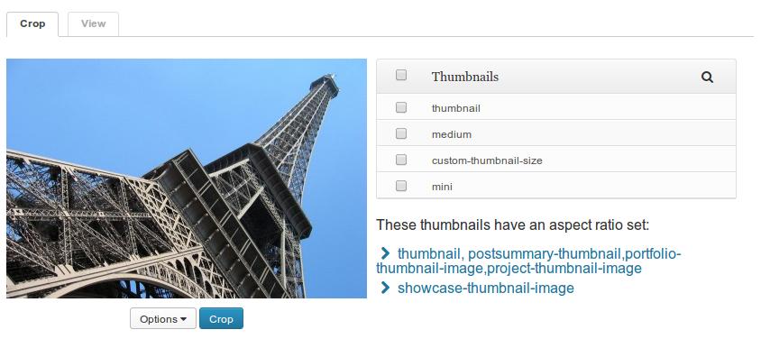 post-thumbnail-editor-main-screen